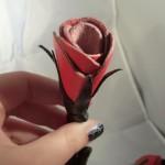Tie Me Up Rose Vine Bondage Rope
